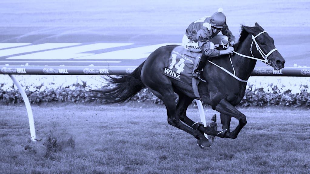 Winx Australia's greatest Racehorse