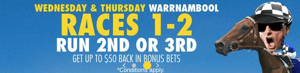 Warrnambool Day 1 tips 2019