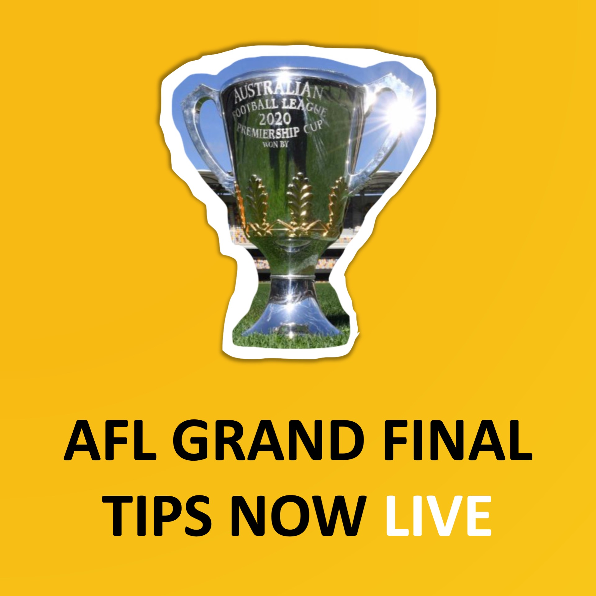 Essendon best and fairest betting advice tour de france 2021 stage 8 betting preview goal